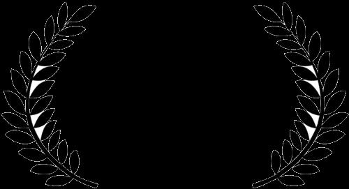 DAC ICE (SAARC)